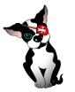 skippy dog log